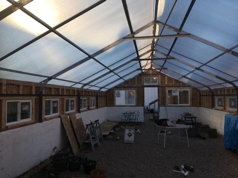inside greenhouse oct 2018